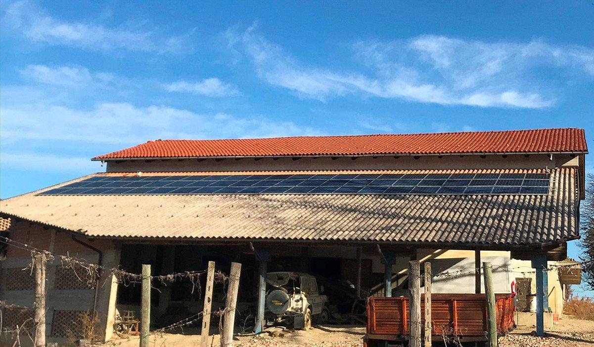 FTV Azienda Agricola