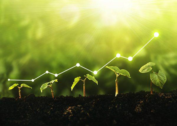 O&M Revamping e Repowering - Biotech